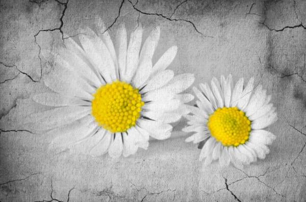 夫婦喧嘩で望まない離婚を絶対に回避する9つの方法